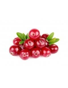 Cranberies小红莓脱水