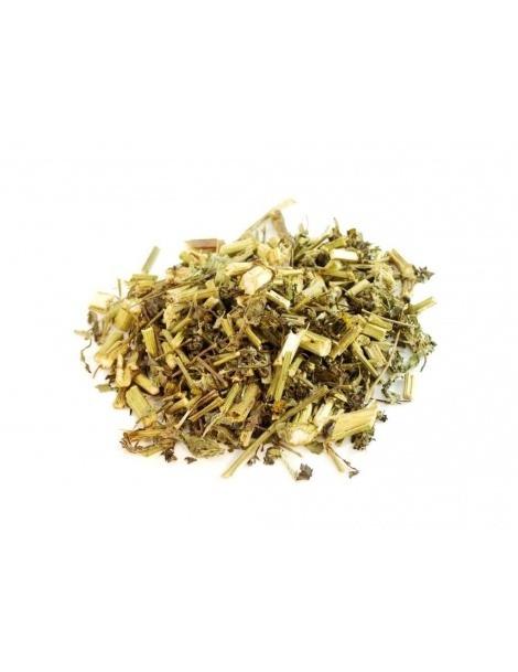Chá de Picão Preto (Bidens pilosa L.)