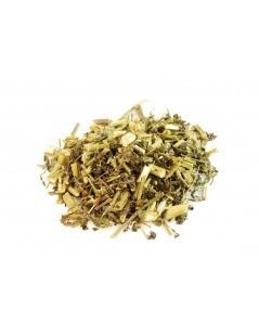Chá de Picão Preto - Bidens pilosa L.
