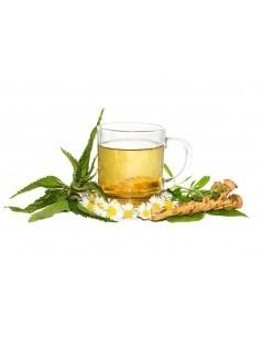Chá de Raíz de Urtiga (Urtica dioica)