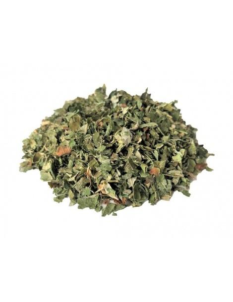 Maulbeerblätter Tee - Amora Miura (Morus Nigra L)