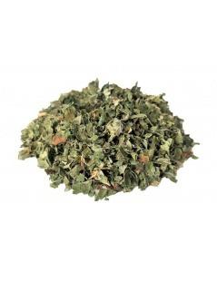 Chá de Amora Miura - Folhas de Amoreira