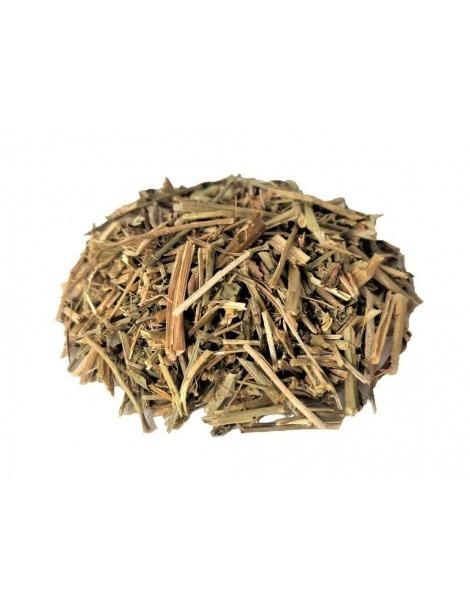 Chá de Lotus (Lotus corniculatus L.)