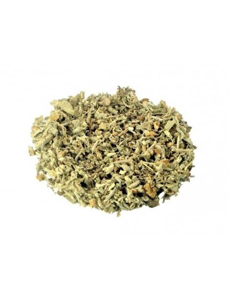 Tè di Salvia (Salvia officinalis L.)