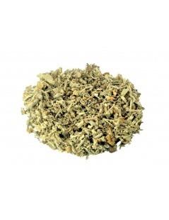 Tee aus Salbei (Salvia officinalis L.)