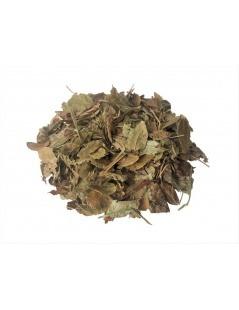 Chá de folhas de Mirtilo (Arando)