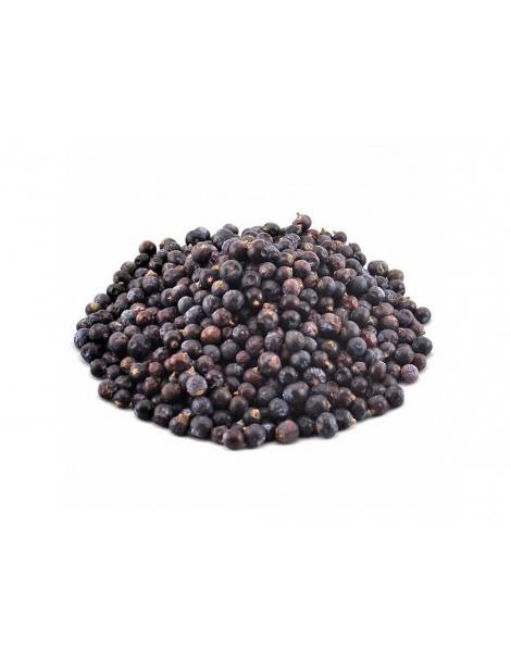 Bayas de Enebro (Juniperus communis)