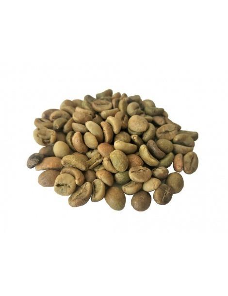 Grüne Kaffeebohnen (Coffea)
