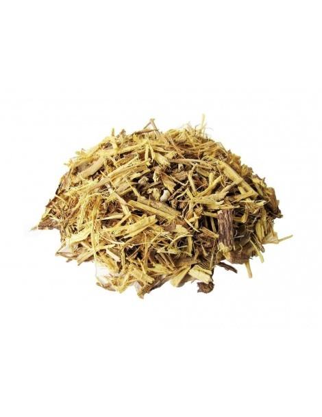 Alcaçuz (Glycyrrhiza glabra L.)