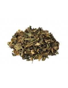 Chá de Moringa Oleifera em planta