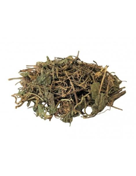 Chá de Centella Asiática (Gotu kola)