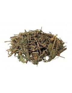 Chá de Centella Asiática - Chá de Gotu kola