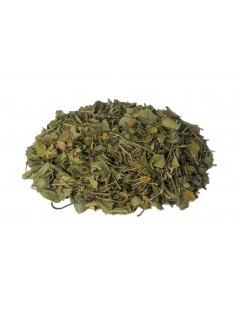 Chá de Moringa Oleifera em folhas