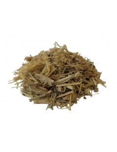 Chá de Ginseng Siberiano (Eleutherococcus senticosus)