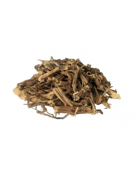 Brennesselwurzel Tee (Urtica Dioica)