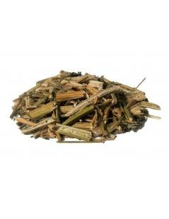 Hierba Formigueira (Chenopodium ambrosioides L.)