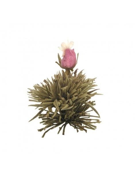 Caixa com 6 Flores de Chá