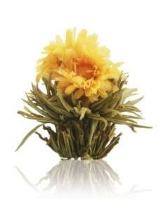Caixa de Madeira com 12 Flores de Chá