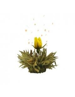 Boîte en bois avec 12 Fleurs de Thé
