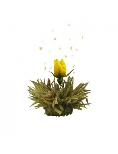 Holzkiste mit 12 Blüten für Tee