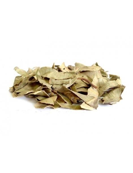 Thé Jambolão (Syzygium Jambolanum)