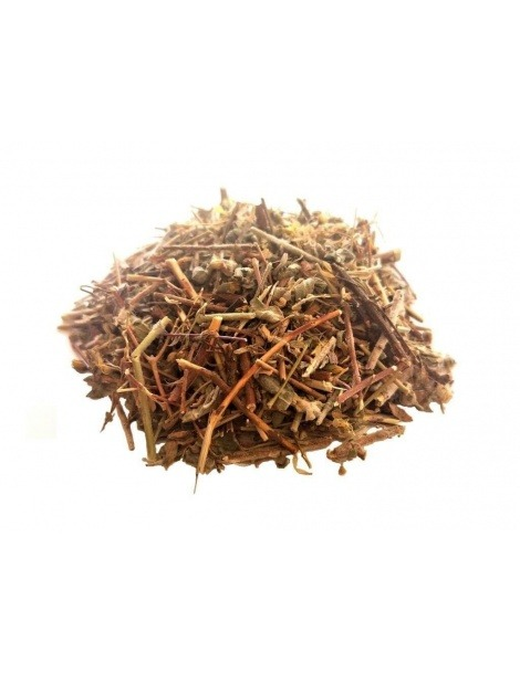 Tè Calafito (Hypericum tomentosum)