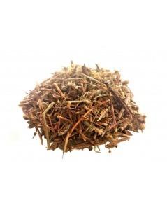 Chá de Calafito (Hypericum tomentosum)