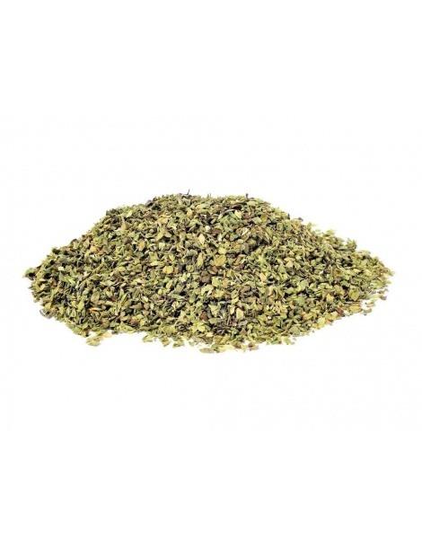 Oregano-Pflanze (Origanum Vulgare)