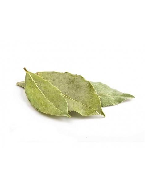 Chá de Loureiro (Laurus nobilis)