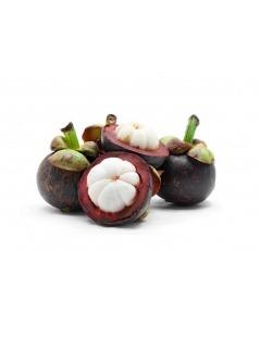 Garcinia, frutos