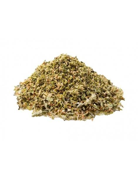 Manjerona em folhas (Origanum majorana L.)