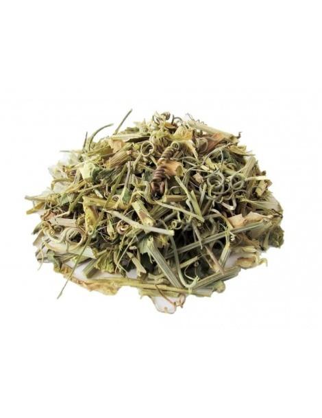 Chá de Passiflora em planta (Passiflora incarnata)