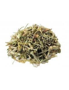 Tee aus Passionsblume - Passiflora incarnata
