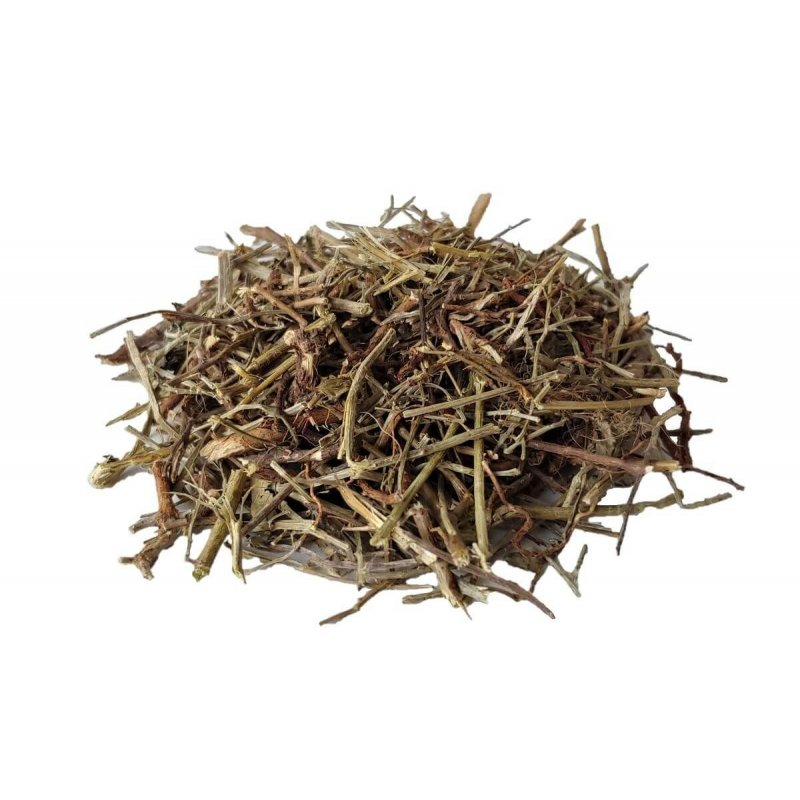 Stonebreaker Herbal Tea (Phyllanthus niruri)
