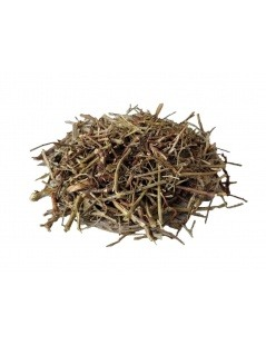 Té de Chanca Piedra (Phyllanthus niruri)