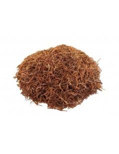 Chá de Barbas de Milho (Zea Mays) - Chá de milho estiletes