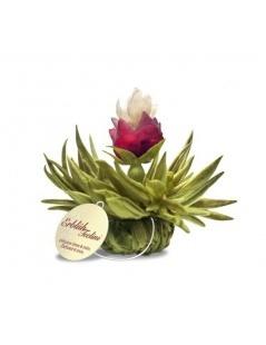 Caixa Tealini com 8 Flores de Chá