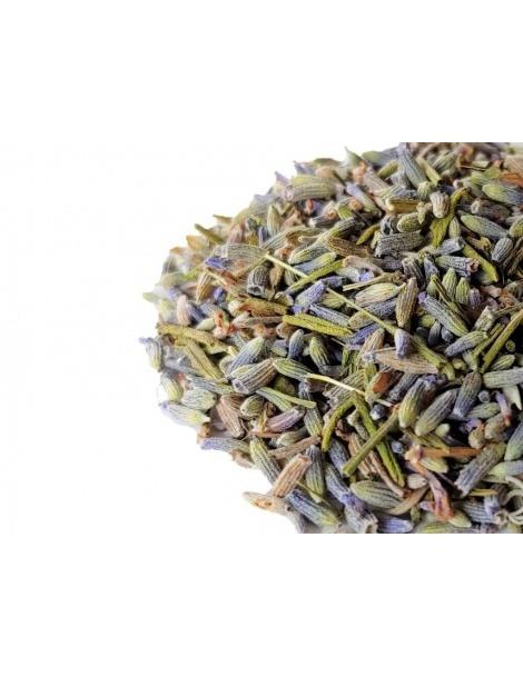 Lavender Tea - Lavandula angustifolia