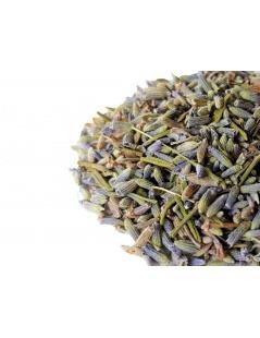Té de Lavanda, Lavandula angustifolia