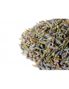 Thé de Lavande - Lavandula angustifolia