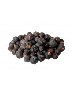 Les baies de genévrier (Juniperus communis)