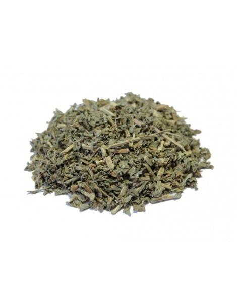 Albahaca (Ocimum basilicum)