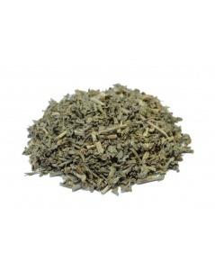 Chá de Manjericão - Ocimum basilicum