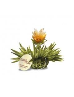 Cuadro Tealini con 8 Flores de Té