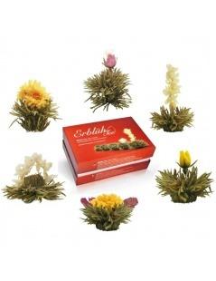 Set Teekanne mit 6 Blumen-Tee