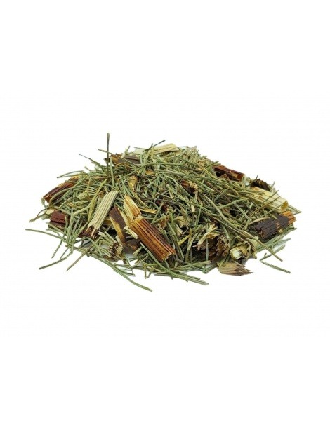 Horsetail Tea (Equisetum Arvense)