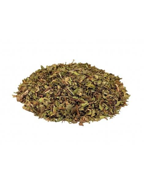 薄荷的新鲜、有机叶(薄荷spicata)