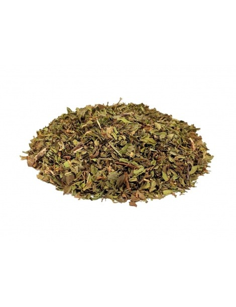Menthe Verte, feuilles (Mentha spicata) - Organique