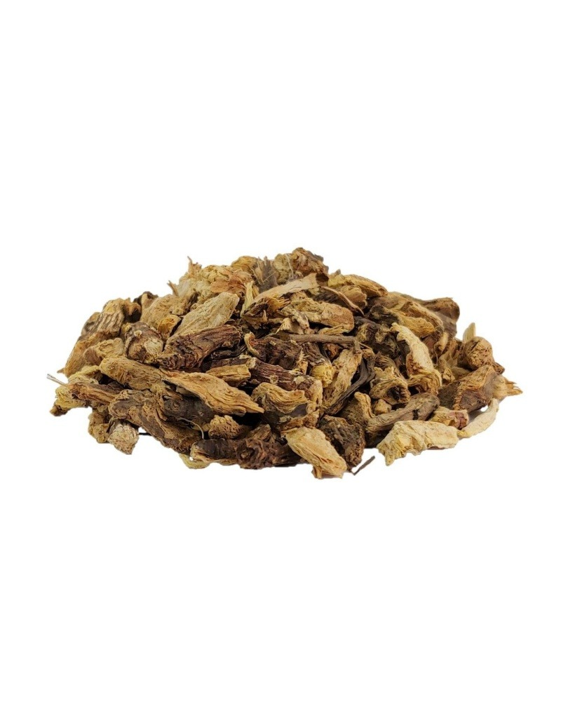 Echinacea purpurea root tea
