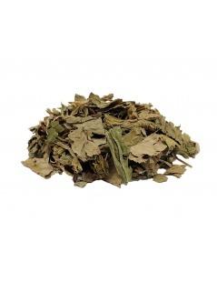 Chá de Tanchagem - Plantago major